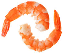 Eats_Shrimp