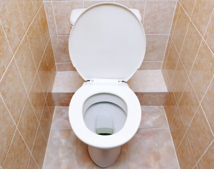 10. How to: Clean the toilet bowl