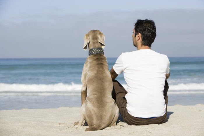 5 ways pets can help people recover from addiction
