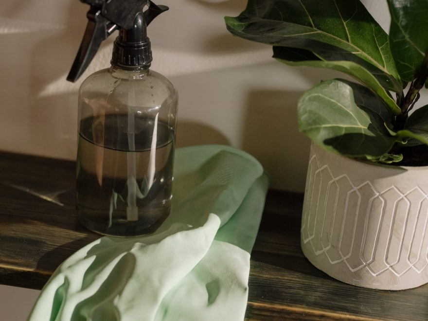 Best Spray Bottle for the home